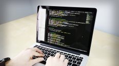 Magento Developer | What Your Magento Web Developer Can Do for You